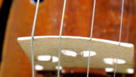 The four strings of the big violin video
