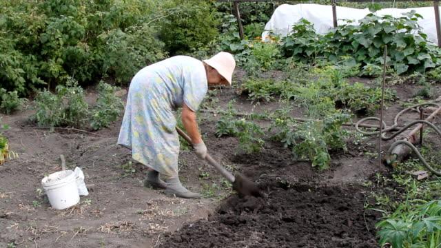 The gardener video
