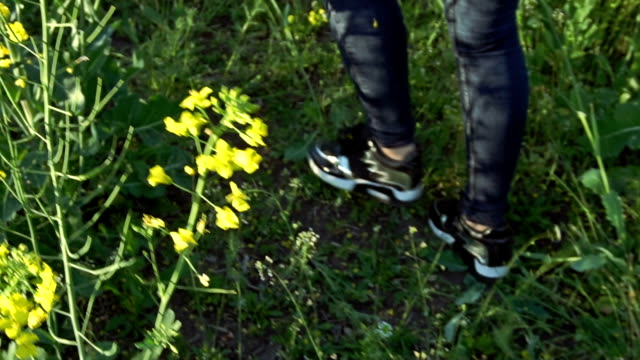 The girl is walking on the rapeseed field video