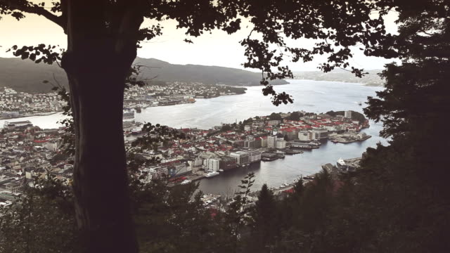 The harbor of Bergen, view from Floyen video