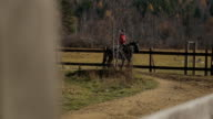 The horse is walking in the circle road of the paddock with the female jockey on its back video