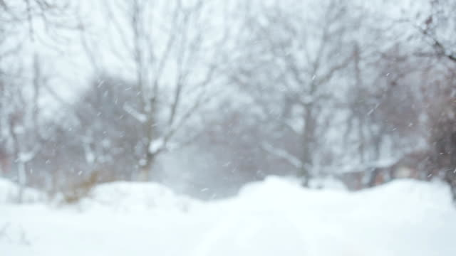 The Joy of Winter. Playing With Snow. video