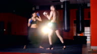 The kickboxing training of the girl with focus mitts. Close-up. 4K video