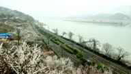 The ktx train runs on the railway line next to the farm where the plum blossoms bloom. video
