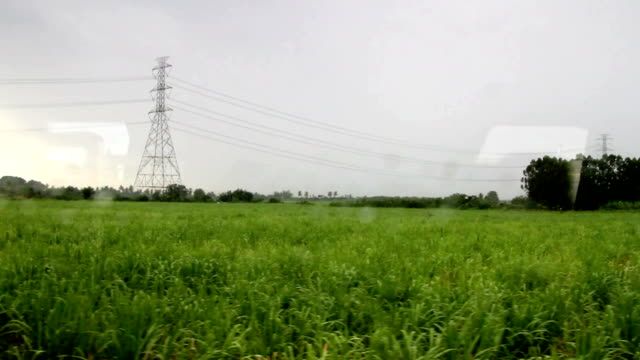 The land scape looking from train. video