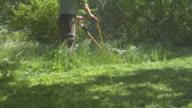 The Lawnmower Man video