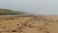 The long shore of the beach in Normandy video
