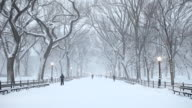 The Mall in Central Park During Winter Snow video