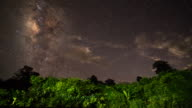 The Milky Way and some trees video