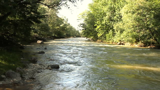 The mountain river among the rocks video