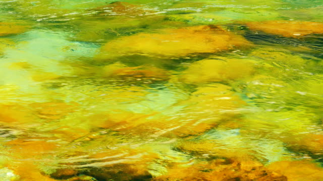 The mountain river flows among stones, water texture video