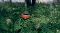 The mower cuts high green grass and pieces of grass fly around. Slow mo, slo mo video