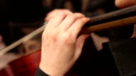 The musician plays the double bass, contrabass video