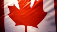 The national flag of Canada is swaying in the wind, slow mo video
