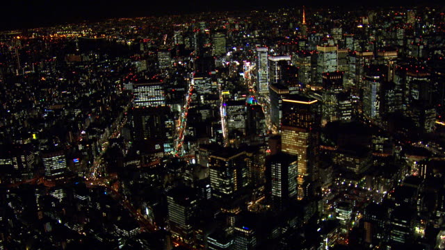 The night view of Tokyo video