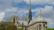 The Notre Dame Cathedral in Paris with the trees video