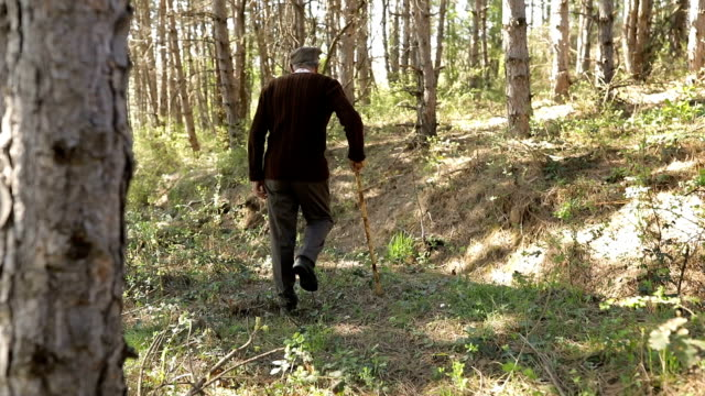 The old man is walking through the forest video