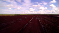 The peat field with the bue sky and white clouds video