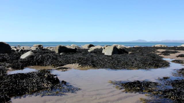 The Perfect Rock Pool Tidal Pool Beach video