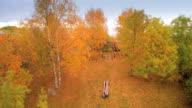 The playground near the shore in Estonia video