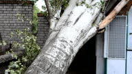The poplar filled up on the house. video