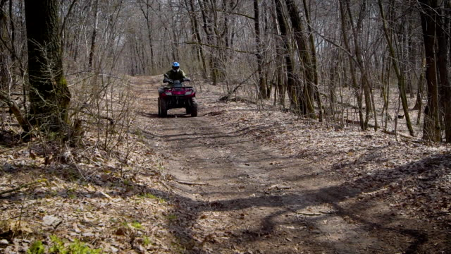 The racer on the ATV in the autumn wood. The man on the racing ATV at a high speed passes on the forest road video