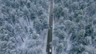 The road in the winter forest. video