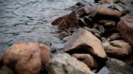 the roke shore video