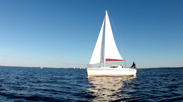 The Sailing Boat. video