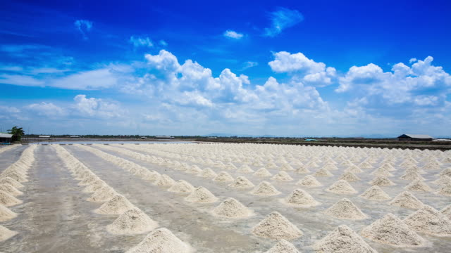 The salt industry is the largest salt. video