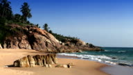 The seashore with stones and palm trees. India. Kerala video