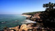 The seashore with stones and palm trees. India video