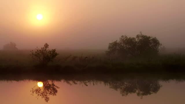 The Smoke at Dawn video
