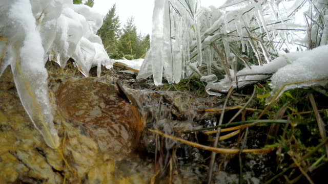 The snow melts, the creek flows (timelapse) video