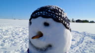 The snowman with long nose and bonnet video