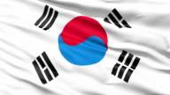 The South Korea Flag video