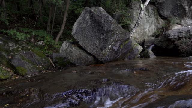 The stream video