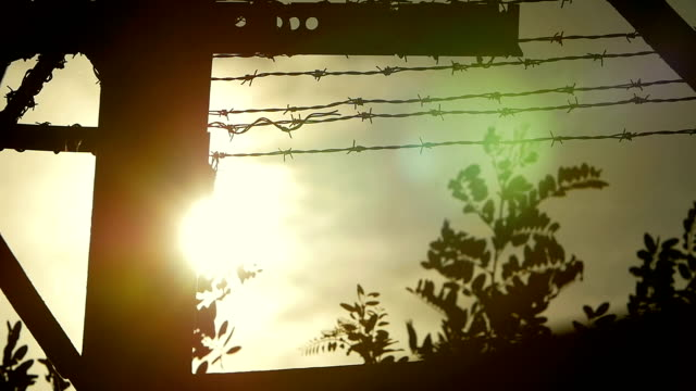 the sun over the prison: fence with barbed wire video