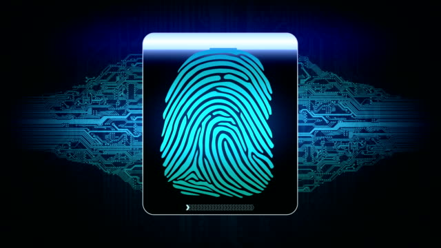 the system of fingerprint scanning - biometric security devices, result of the fingerprint scan access is granted video