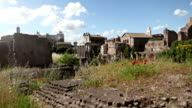 The Temple of Antoninus and Faustina in Roman forum video