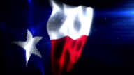 The Texan Flag - Background Loop (Full HD) video