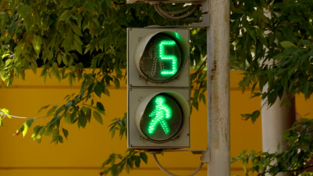 The traffic light for pedestrians on the street on a summer day on the background of green foliage of trees. The green light turns red, a countdown video