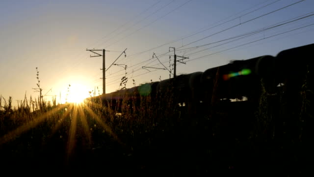 The train moves through beautiful sunlight. video