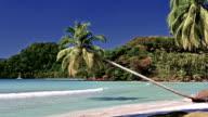 the tropical beach video