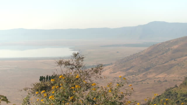 AERIAL: The view of vast Ngorongoro volcanic crater safari from the top of rim video