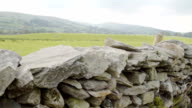 The Welsh Dry Stone Wall Deep In The Countryside video