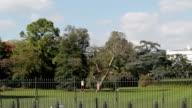 The White House South Lawn, Washington DC video