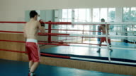 The young boxer trains on a ring opposite to a mirror video