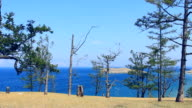 There is beautiful landscape of lake coast line video