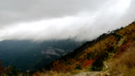 thick clouds over mountains and autumn forest video